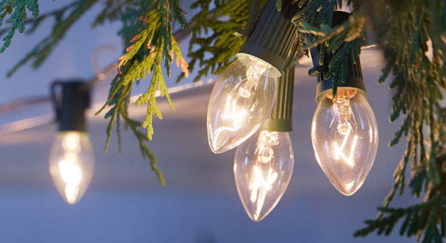 Christmas Light Safety